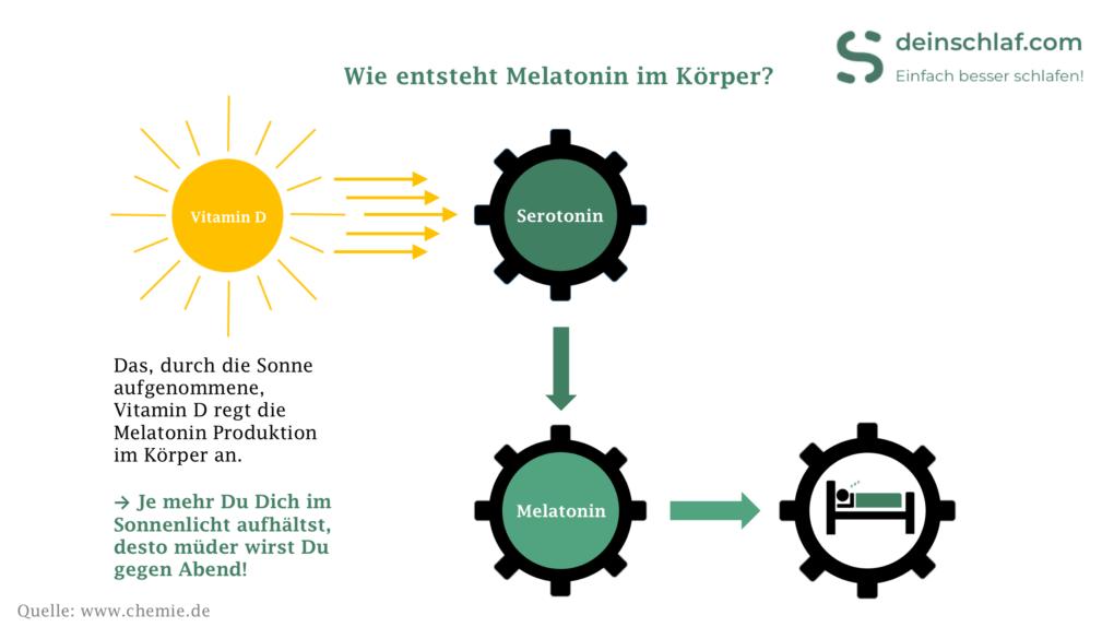 Wie wirkt Melatonin im Körper - Infografik